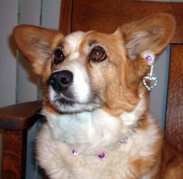 6th-birthday-earring-2.jpg