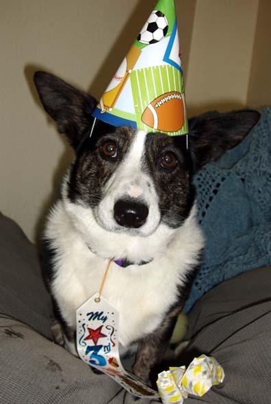 kips-3rd-birthday1-7-28-08-blog.JPG