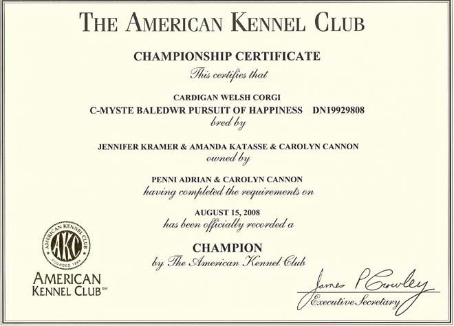 akc-championship-certificate.jpg