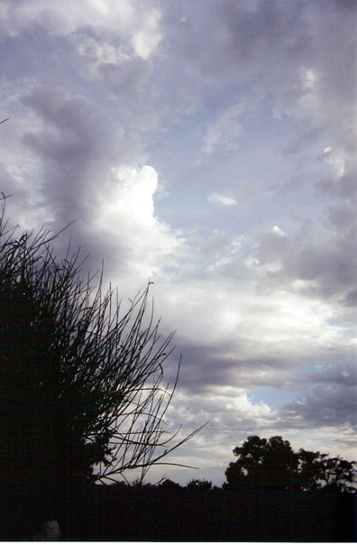 evening-clouds-from-back-yard-blog.jpg