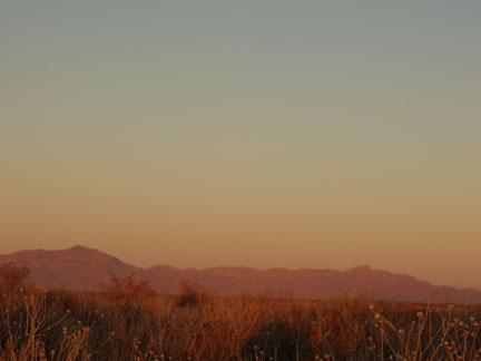 sun-reddened-tracking-fields-1-25-09.jpg