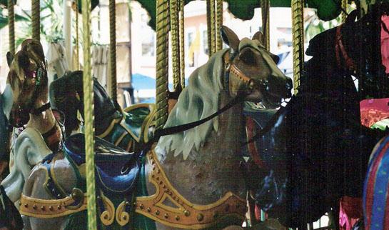 miami-merry-go-round.jpg