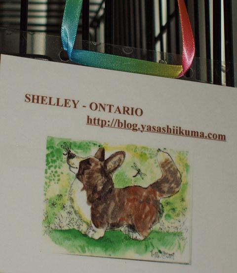 shelley-grooming-hanger-3-21-09.jpg