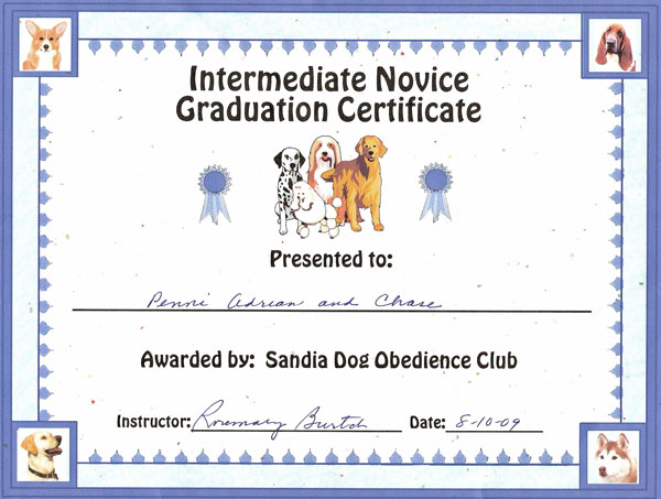 Intermittent Obedience Certificate