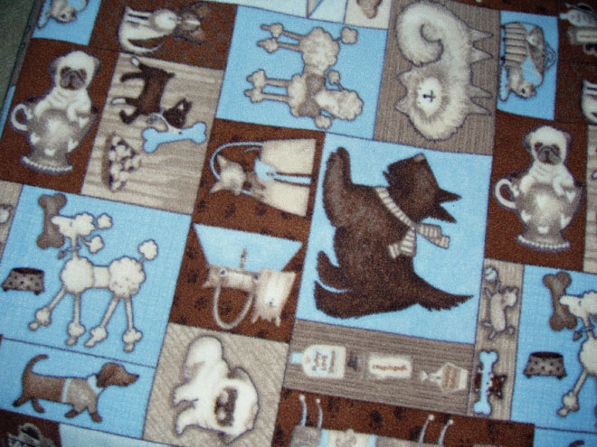 Puppy Surround 9-6-09