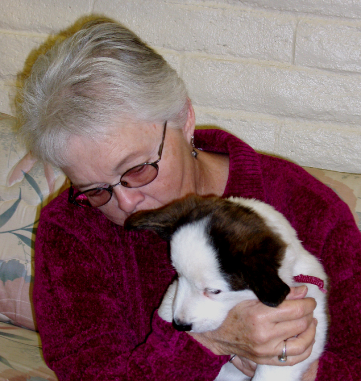 More puppy fix 11-17-09