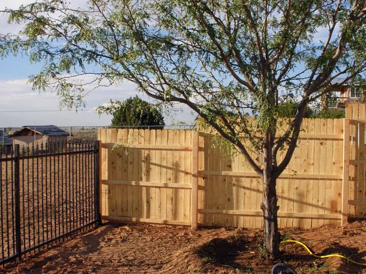 Wrought Iron Wood Ne Corner Of Yard 10 1 2010