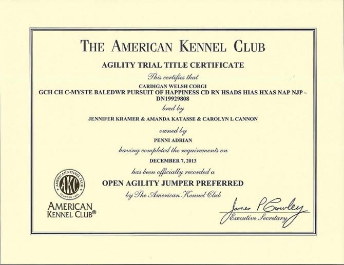 OJP Certificate blog