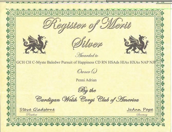 ROMs Certificate blog