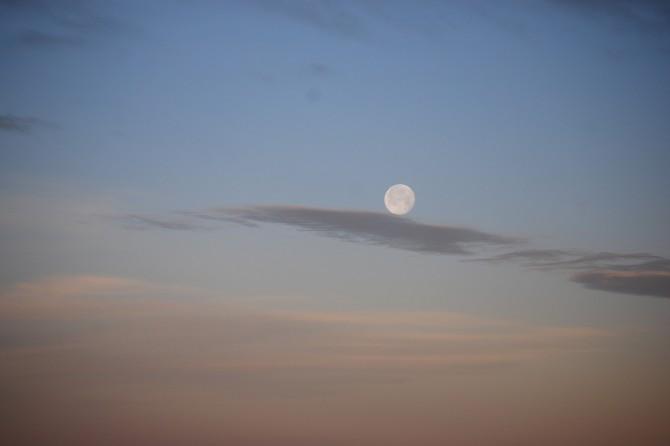moonset - 2-22-14 Bulletin vertical
